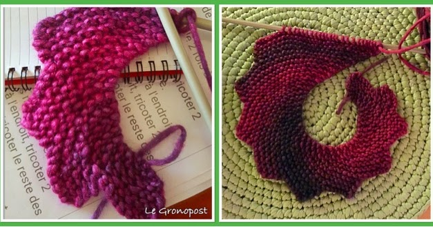 tuto tricot echarpe queue de dragon