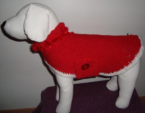 tuto tricot manteau chien