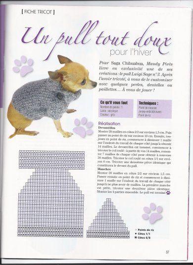 tuto tricot pour chien