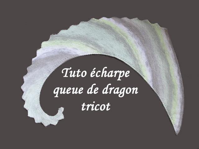 tuto tricot echarpe queue de dragon